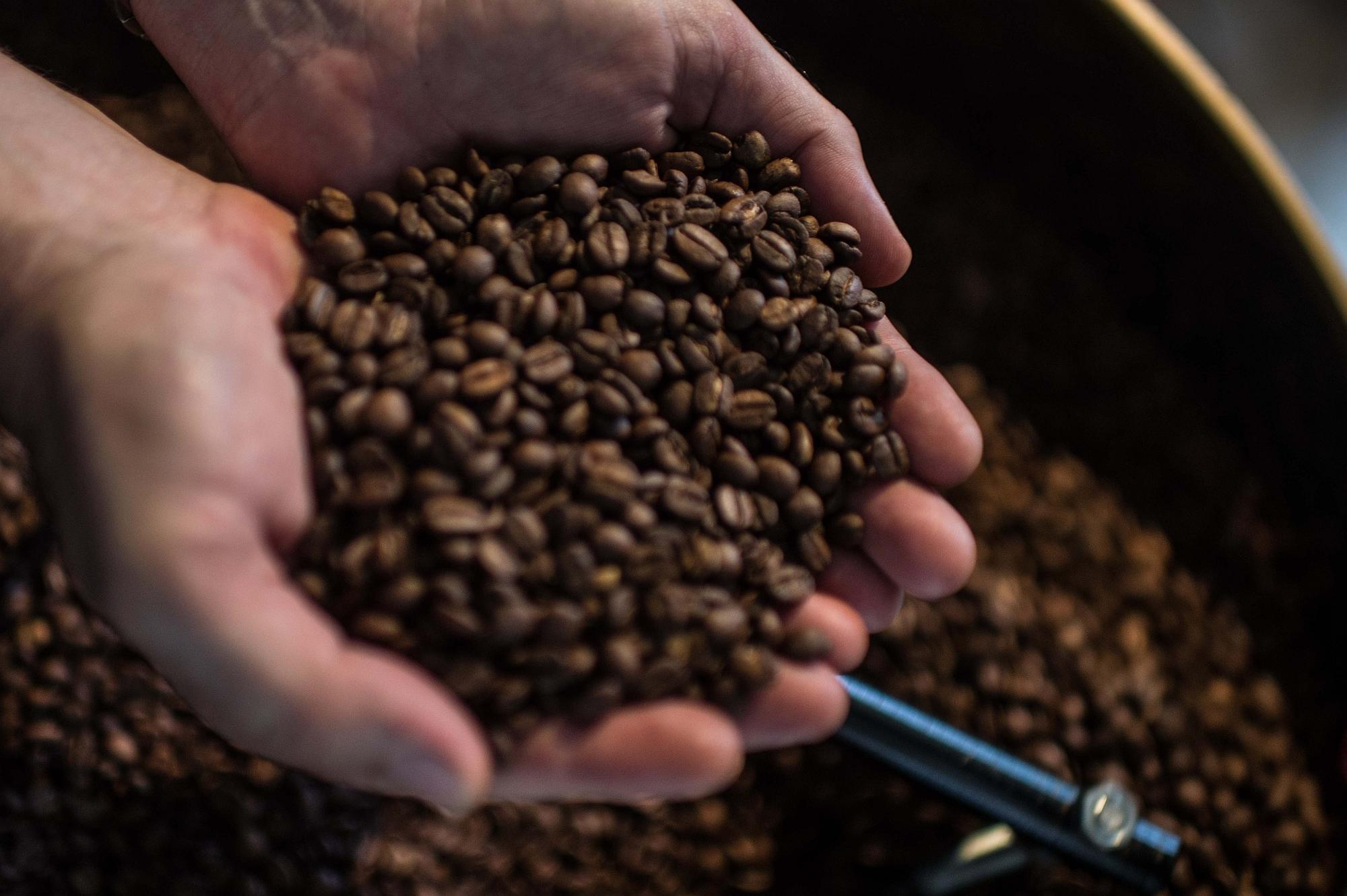 Exportações do agronegócio: embarques de café estão em queda