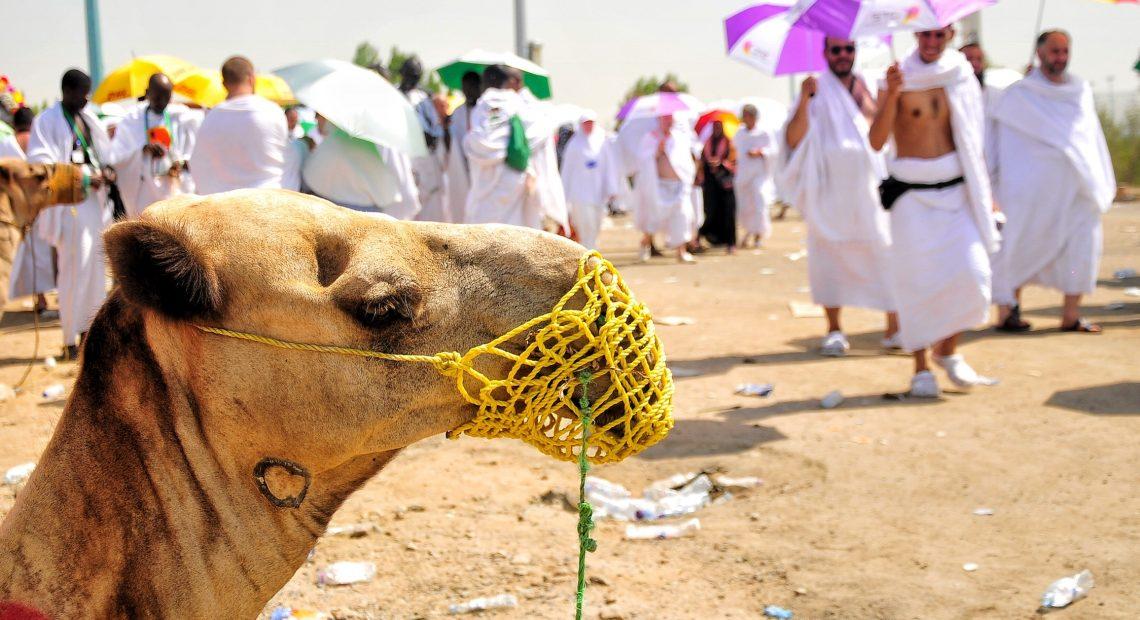 Peregrinos em Meca: turismo muçulmano