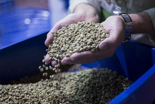 Exporatções de café bateram recorde em outubro