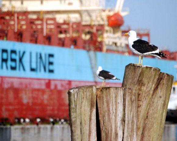Navio parado no Porto de Itajaí