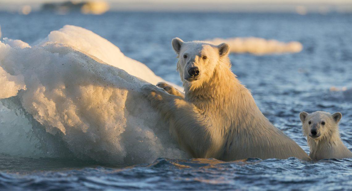 COP-25 discutirá a execução do Acordo de Paris sobre o clima