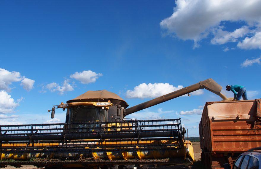 Soja é um dos principais produtos da balança comercial