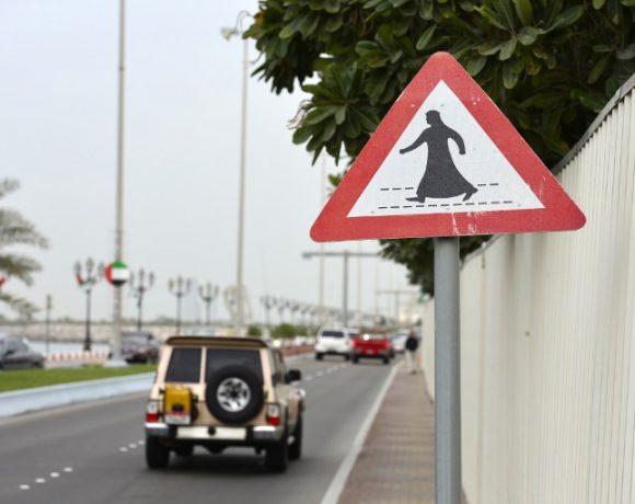 Pelas ruas de Abu Dhabi. Nos parques, meninas e gatos