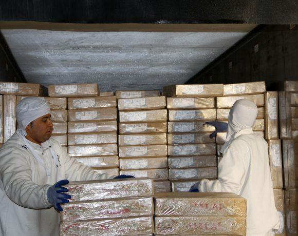 Carne bovina halal exportada pelo Brasil