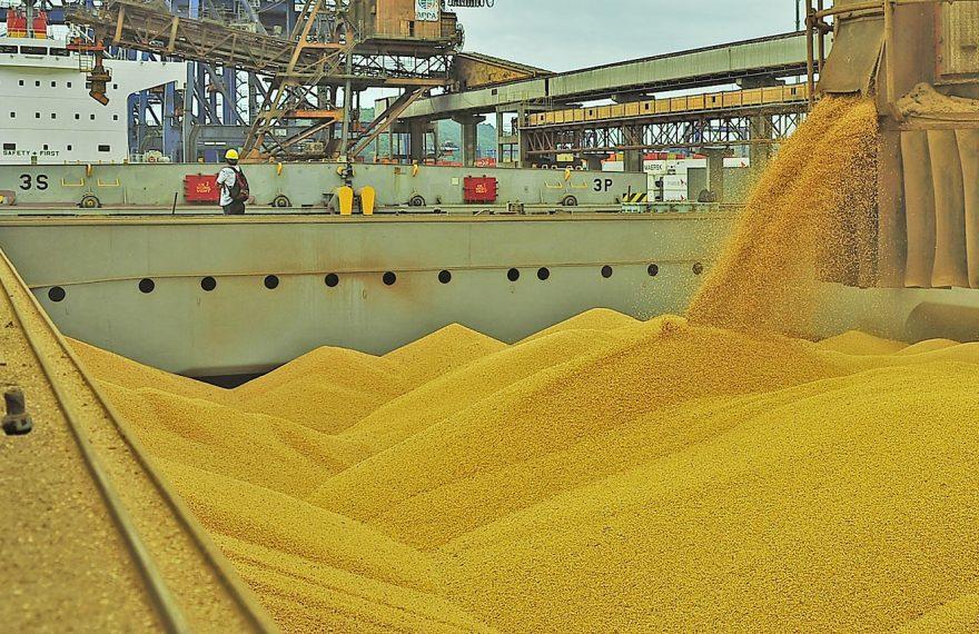 Exportações brasileiras de soja bateram recorde