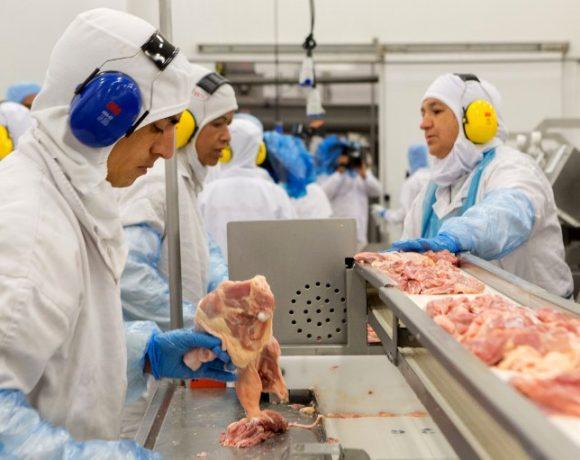 Comitiva de exportadores de carne de frango do Brasil e partiu no último domingo (10).