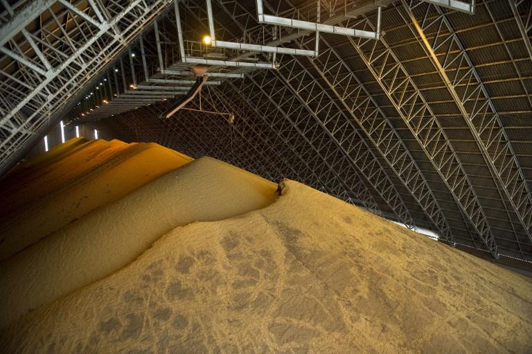 Soja foi destaque nas exportações do agronegócio