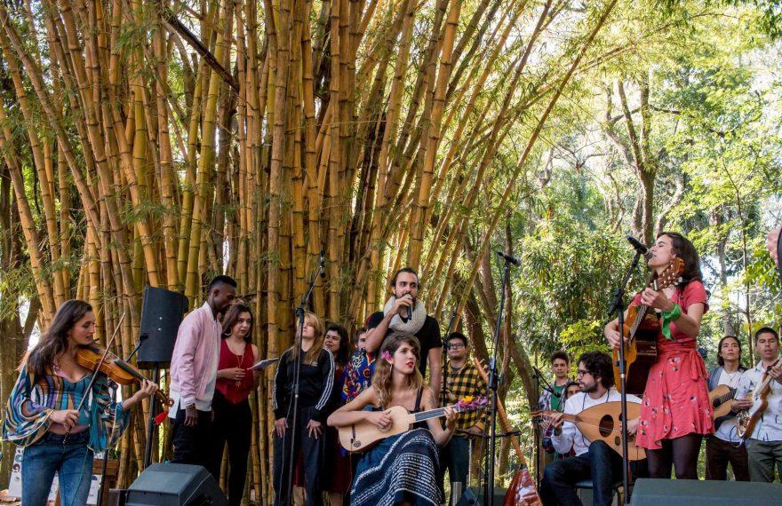 O festival de músicos