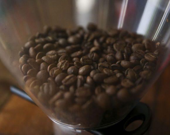 Safra de café arábica é a que sofre maiore redução na bienalidade