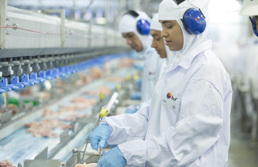 Processamento de carne de frango em fábrica da BRF, em Goiás