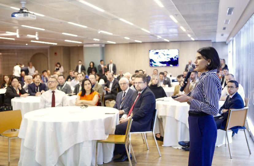 Mariana Vicentini Taylor falou sobre o Protocolo de Madri