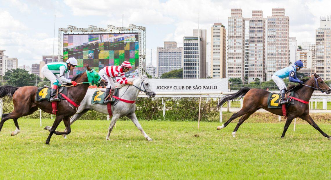 Arab Chamber Grand Prix Taking Place Saturday In Sao Paulo Agencia De Noticias Brasil Arabe