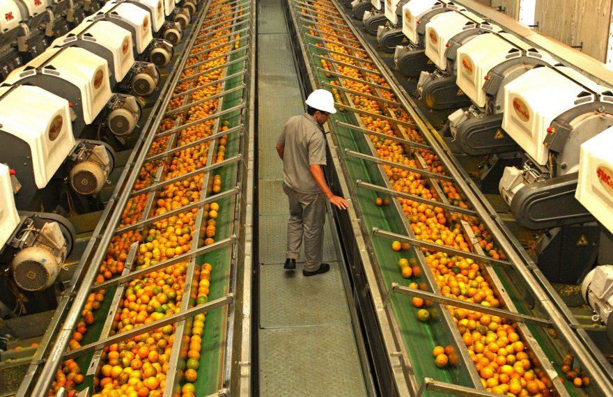 Suco de laranja cresceu nas exportações do agronegócio